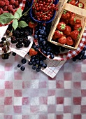 Fresh red and blue berries
