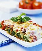 Cannelloni con gli spinaci (Spinach cannelloni)