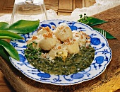 Potato dumplings with ramsons (wild garlic) sauce