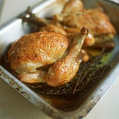Roast quail with thyme in a roasting dish