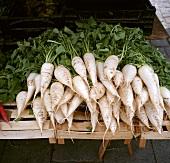 White radishes on a vegetable stall
