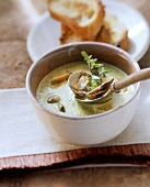 Creamy mussel soup with marjoram