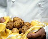 Potatoes on Yellow Towel