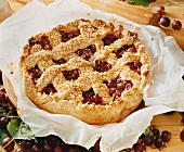 Lattice tart with josta berries