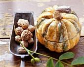Autumn still life with walnuts and pumpkin