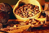 Cocoa beans in jute sack; chocolate