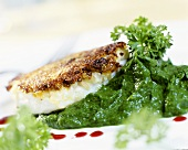 Halibut with mustard crust on parsley mashed potato