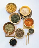 Various types of lentils in small bowls