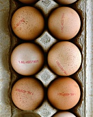 Brown eggs (with stamp) in egg box