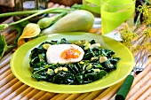 Spinach with fried egg