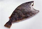 Plaice without head
