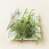 Fresh dill on white platter with knife