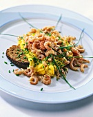 Scrambled egg with shrimps and chives on black bread