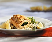 Stuffed salmon trout fillet with lemon crust on rice