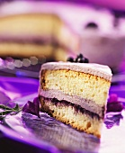 Piece of purple cake (sponge cake with blueberry cream)