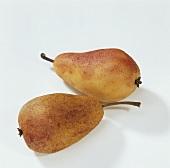 Zwei Marzipanbirnen