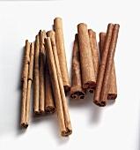 Ceylon-Zimt (Cinnamomum verum) und Kassia (Cinnamomum cassia)