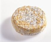 Saint Felicien, soft cheese from France