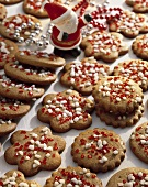Christmassy spiced biscuits with coarse sugar