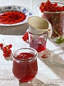 Redcurrant jelly in glasses and fresh redcurrants