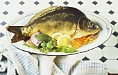 Whole fresh mirror carp on platter
