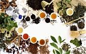 Verschiedene Teesorten, gekocht und ungekocht
