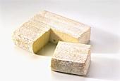Backensholzer Fabro (cremiger Schnittkäse)