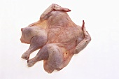Poussin, spatchcocked