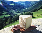 Piece of hard cheese against mountainous landscape