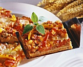 Wholemeal pizza with peppers and mince