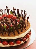 Tiramisu cake with strawberries