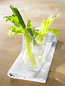 Spring onions and celery in glass of water