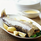Cooked pike with lemons and butter sauce