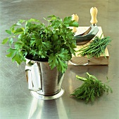 Parsley, dill and chives with mezzaluna