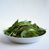 Ingredients for Asian salad with Thai basil on plate