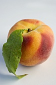 A peach with leaf