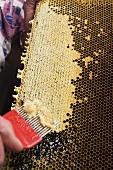 Hand schabt Honig mit Honigkamm aus Honigwabe
