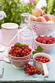 Peaches, berries, sugar and jam jars on garden table