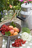 Redcurrants, apricots, bottles, can on garden table