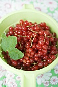 Redcurrants with leaves in a strainer