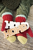 Child's hands in woollen mittens holding gingerbread (HOHO)