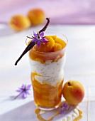 Milchreis mit Aprikosensauce