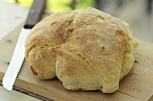 Rustic white bread on chopping board