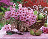 Pink asters, meadow grass and pears in a basket