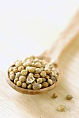 Coriander seeds on wooden spoon