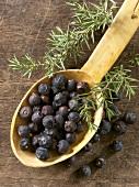 Juniper berries on wooden spoon
