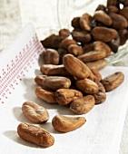 Many cocoa beans