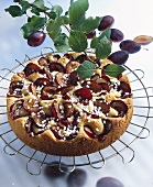 Plum cake with pearl sugar on cake rack