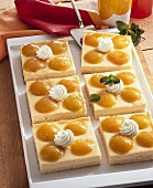 Aprikosen-Pudding-Kuchen