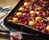 Obstkuchen mit Schmandguss auf Backblech
